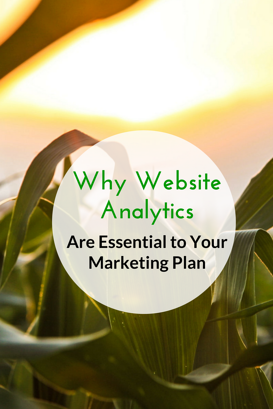 Why Website Analytics Are Essential to Your Marketing Plan